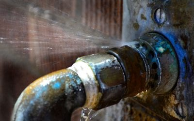 6 Common Signs of Plumbing Problems at Home